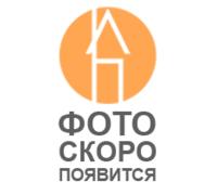 """Мастика термостойкая """"Мастер+"""" 2кг"""